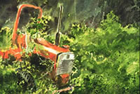 Red tractor covered with kudzu vines